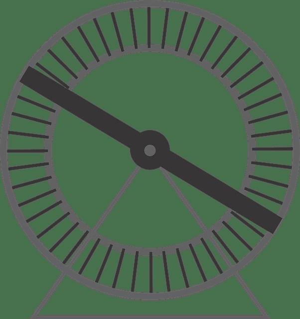 rueda de la rata de Robert kiyosaki